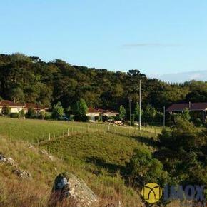 Sítios/Áreas de Terra em Jaquirana, bairro Várzea Do Cedro