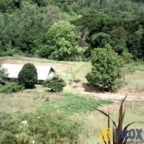 Sítios/Áreas de Terra em Santa Maria do Herval, bairro Padre Eterno Alto