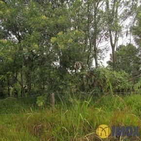 Terreno em Gramado, bairro Vale Dos Pinheiros
