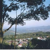 Sítios/Áreas de Terra em Morro Reuter, bairro Centro