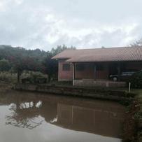 Sítios/Áreas de Terra em Gramado, bairro Serra Grande