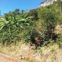 Sítios/Áreas de Terra em Gramado, bairro Linha Furna