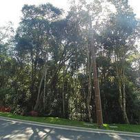 Terreno Condomínio em Gramado, bairro Centro