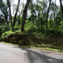 Terreno Condomínio em Gramado, bairro Mato Queimado