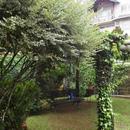 Casa em Gramado, bairro Dutra