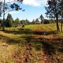 Sítios/Áreas de Terra em Santa Maria do Herval, bairro Padre Eterno