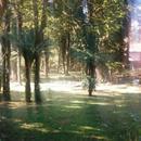 Terreno em Canela, bairro Vila Suzana