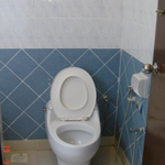 947_toilet