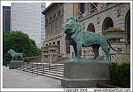 Lion, Art Institute of Chicago, Chicago