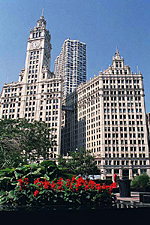 The Wrigley Building, Chicago