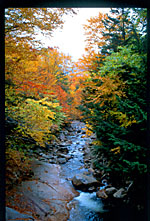 View of stream from a covered bridge, Franconia Notch State Park, New Hampshire