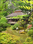 The actual tea shop, Japanese Tea Garden, Golden Gate Park