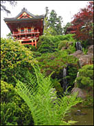 Waterfall and Temple Gate, Japanese Tea Garden, Golden Gate Park