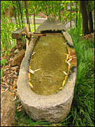 Water Basin, Japanese Tea Garden, Golden Gate Park