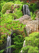 Waterfall, Japanese Tea Garden, Golden Gate Park