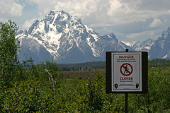 Bear Warning, Grand Teton National Park