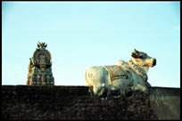 Nandi Statue on the Abhirami Temple, Thirkadayur, Tamil Nadu