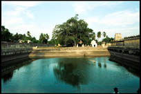 A large pond for devotees to bathe in is typical in the temples of Tamil Nadu