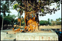 Devotees make a wish and tie a thread around the temple tree, Shaneeshwara Temple, Tamil Nadu