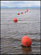 Red Bouys, South Lake Tahoe