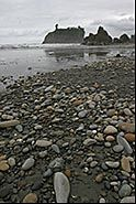Pebbles, Beach and Seastack, Ruby Beach, Olympic National Park