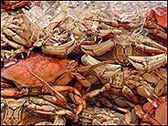Crabs at Fisherman