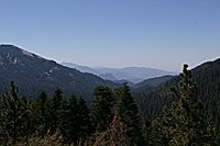 Trees, Mountains and Sky, Vista, Sequoia National Park