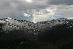 Beartooth Pass, Yellowstone National Park