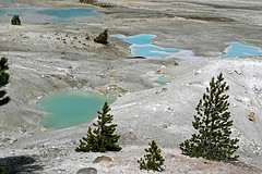 Porcelain Basin, Norris Geyser Basin, Yellowstone National Park
