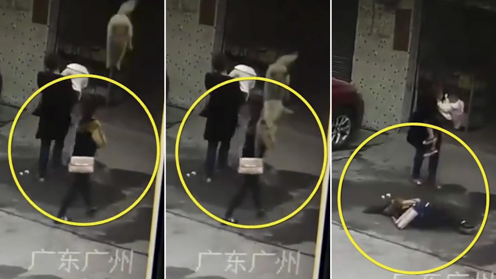Resultado de imagen para fotos. perro cae desde edificio sobre mujer