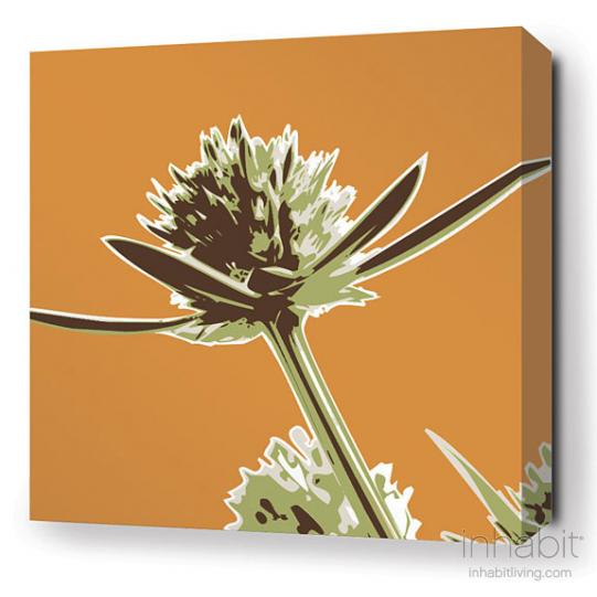 Propeller in Sunshine Stretched Wall Art