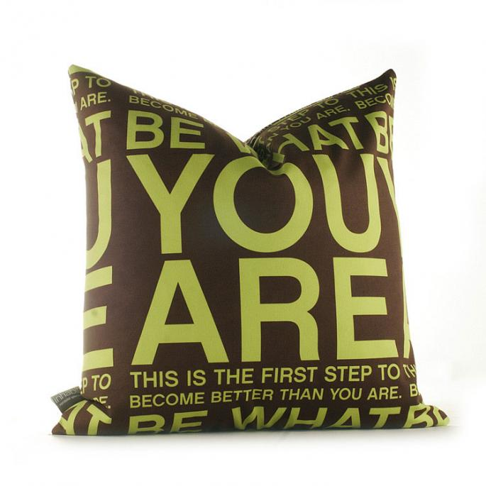 You Are in Lime and Chocolate Pillow