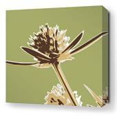 Propeller in Grass Stretched Wall Art