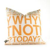 Why Not in Sunshine Pillow