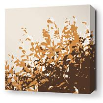 Foliage in Sunshine Stretched Wall Art