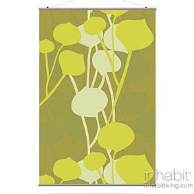 Seedling in Olive Slat