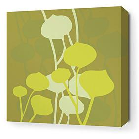 Seedling in Olive Stretched Wall Art