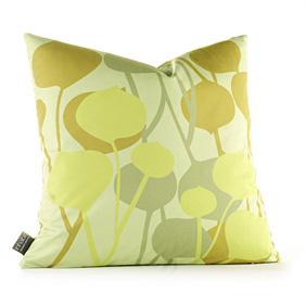 Seedling in Pale Green Pillow