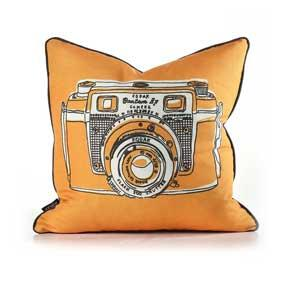 Shutter in Sunshine Pillow