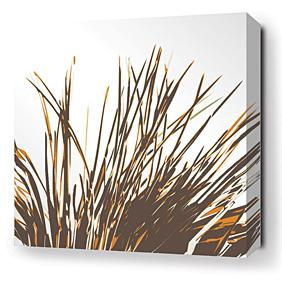 Thatch in Sunshine Stretched Wall Art