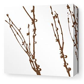 Undergrowth in Chocolate 1 Stretched Wall Art
