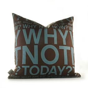 Why Not in Cornflower and Chocolate Pillow