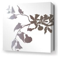 Morning Glory in White Stretched Wall Art