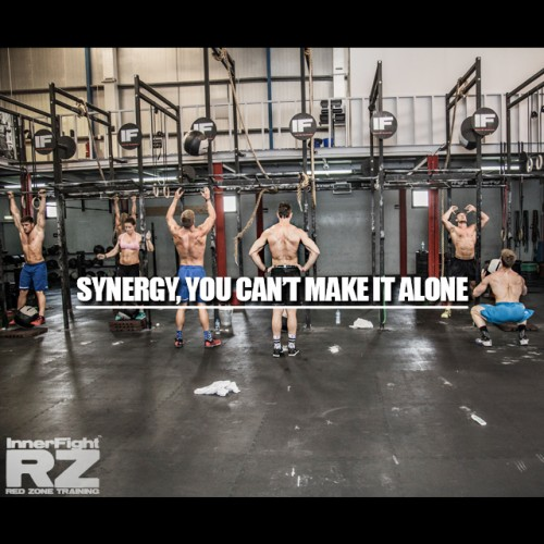 Synergy, You Can't Make it Alone