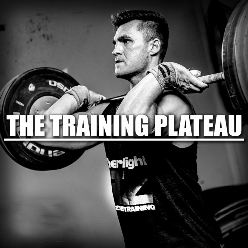 The Training Plateau