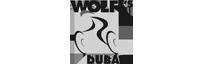 wlofs-subai logo
