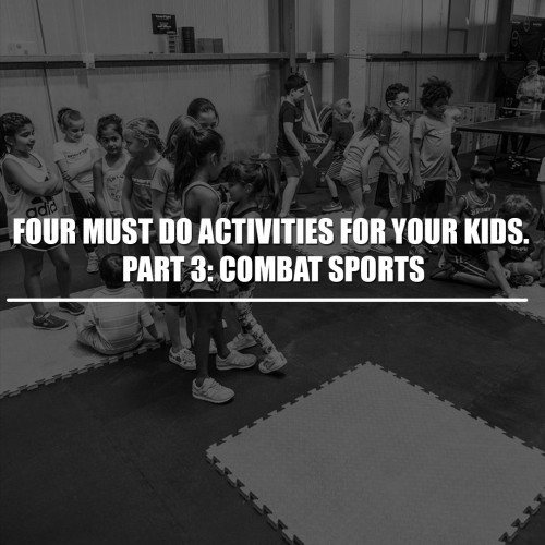 Four must do activities for your kids. Part 3: Combat Sports