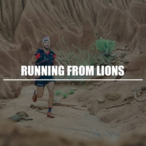 Running from Lions