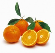 Grow your own oranges and lemons