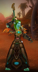 Level 90 Female Troll Druid Wow Accounts for sale